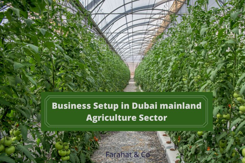 Business Setup in the Agriculture sector of the Dubai mainland