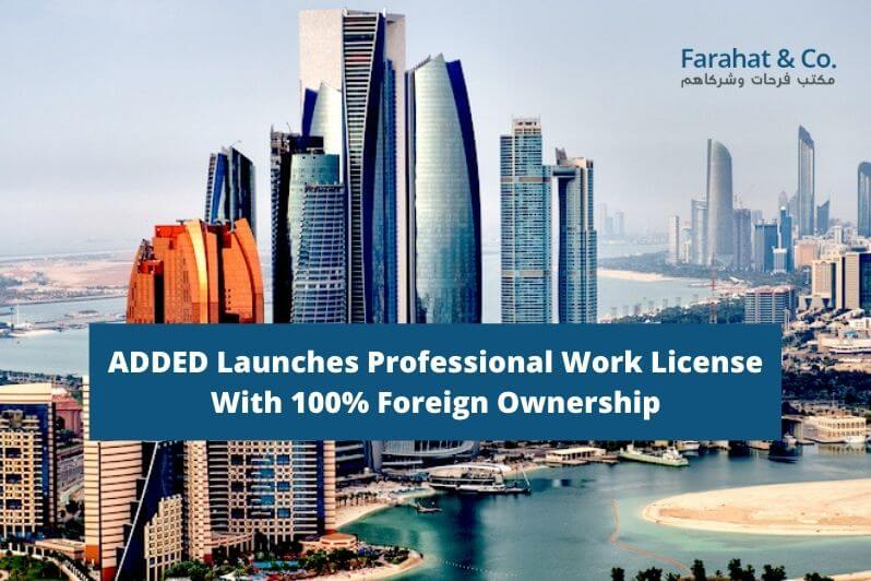Professional Work License With 100% Foreign Ownership